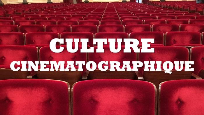 culture cinématographique le melting potes