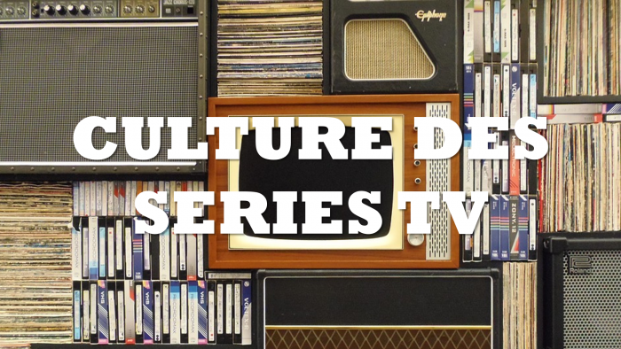 culture séries tv le melting potes